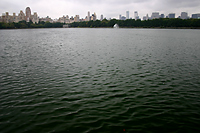 New York Skyline Across the Central Park Reservoir