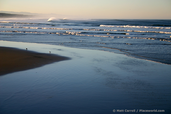Oregon surf
