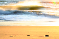 offshore winds