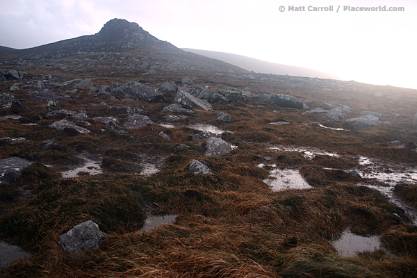 moorland after downpour